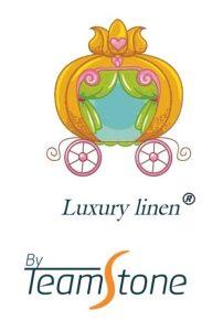 logo By Teamstone - Registo de Marca - Inftek 18-12-18-min
